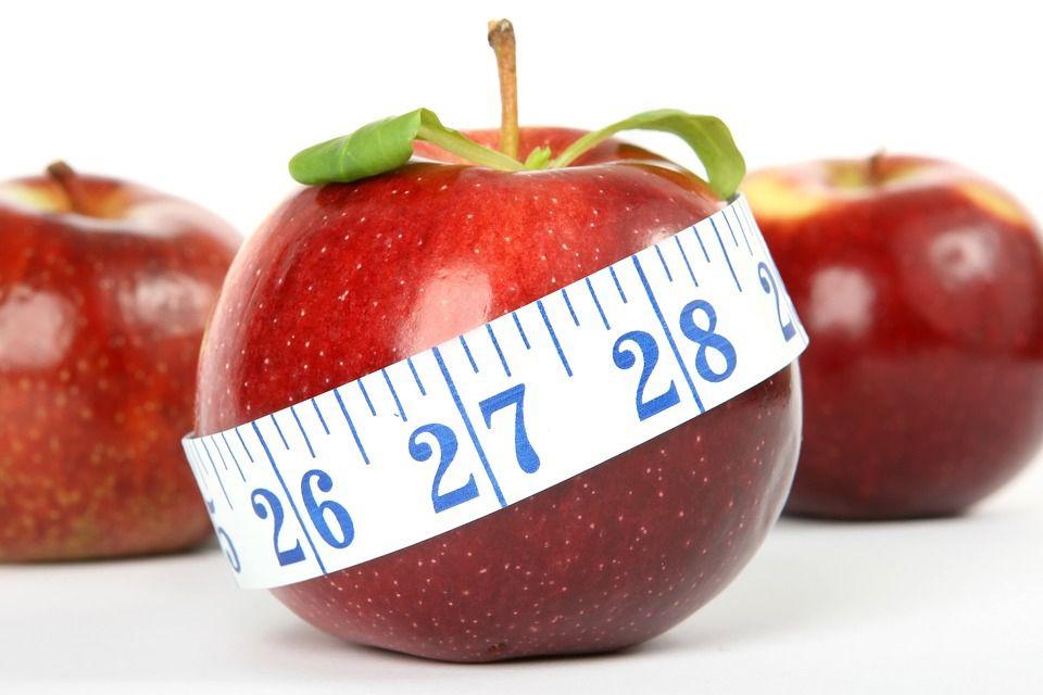 tipos de metabolismos